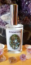 Erneuerung    -   Eukalyptus - Rejuvenate
