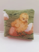 Hatching Spring Chick Cushion