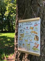 Kunstdruck mit unseren süßen Waldschule-Tieren inkl. Aufhängung
