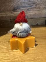 161 Orange Zimt Weihnachtsstern mit Wichtel