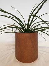Pot stof leder + plant