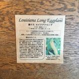 緑ナス ルイジアナロング