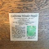 カリフォルニアワンダー ピーマン