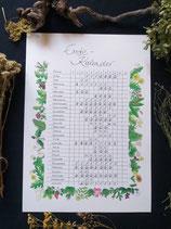 Kräuter-Ernte-Kalender