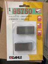 Dahle Magnet 23x50 2Stk. Grau