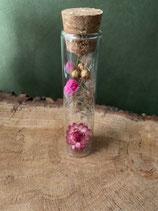 Glazen cilinder vaasje met droogbloemen klein