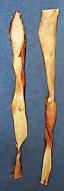 1 kg Rinder - Kopfhautstange ca. 50cm