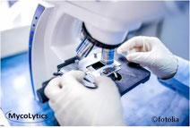 MycoLytics - Kontaktfilm zur Direktmikroskopie,Kultivierung, Schimmelpilze, Bakterien, Holzzerstörer, Luft-, Staub-, Materialproben