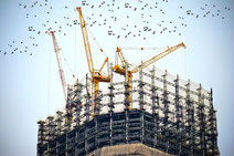 Hochbau: Gebäude-Baustelle mit drei gelben Kränen
