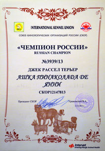 Сертификат Чемпиона России!