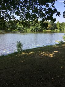 City park Groningen