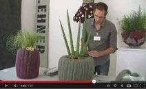 Videoanleitung Designergefäss - Christian Platzner