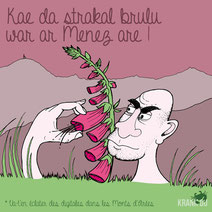 expression bretonne : Kae da strakal brulu war ar Menez Are > va t'en faire éclater les digitales dans les Monts d'Arées > Oust! du balais! citation bretagne dessin image illustration graphiste brest illustrateur finistère