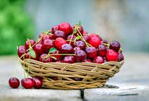 Domaine de Vielcastel, votre location saisonnière pour vos vacances en famille avec des fruits bio