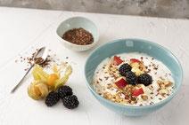 Geprüfte IN FORM-Rezepte, IN FORM, Blitzrezept, schnelles Rezept, einfaches Rezept, schnelle Zubereitung, schnell kochen, gesunde Ernährung, gesundes Essen, gesund essen, gesundes Rezept, Leinsamen-Müsli, Leinsamen, Müsli, Frühstück, Frühstücksrezept
