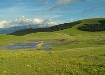 Moorseelein auf den grünen Hügeln der Monti Sibillini