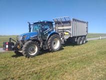 Gras, Mais, Getreide, Hackgut Transport