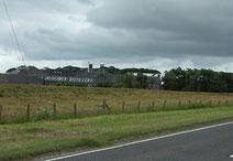 インチガワー蒸留所の画像