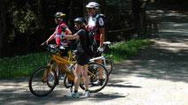 Starten Sie mit Ihrem Rad vor unsere Haustür auf dem Rad-Wanderweg nach Stein, durch Bad Berneck.