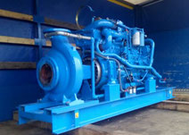 remont silników diesel pomp ppoż