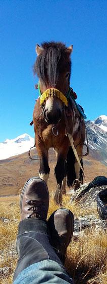 l'équipe en expédition Mongolie