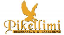 Website erstellt für Pikellimi Kufomash