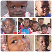 Malawikids
