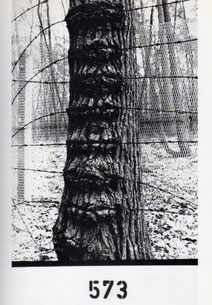 "ausstellungskatalog; paul pfarr ""die nähe der dinge""; vacat- verlag, 1998"