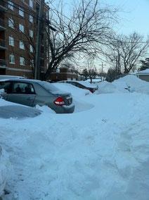 車が隠れてしまうほど雪が降ることもあったシカゴ。雪が降る時期は外回りの際の運転にはいつも以上に注意が必要でした