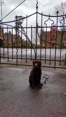 Toni vor den Toren der Zeche Zollern.