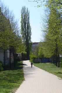 Grüntaler Promenade © Diana Schaal