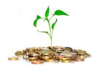 Montes con rentas sostenibles y perpetuación de las plantaciones