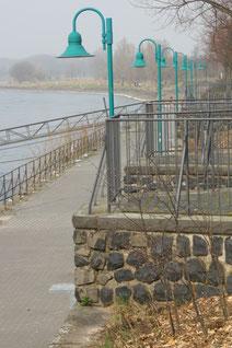 73 Am Rhein/At the Rhein