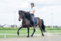 11 horse riding spots in and by Berlin