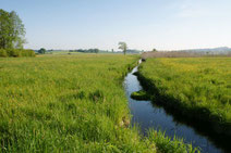 Entwässerung des Federseemoores