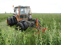 Landschaftspflege durch Landwirte im Federseemoor