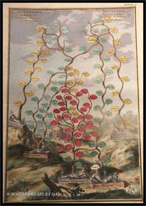 ein besonderer Kupferstich - der Stammbaum Kurfürstin Sophies, Großmutter Georgs II.