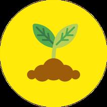 Icone Graine Germée