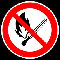 Famille des retardateurs de flammes (polybromodiphényls)