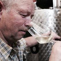 Verkostung der neuen Weine, des neuen Weinjahrgangs