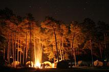 キャンプ入門