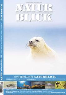 "Naturblick 2016-02 ""Robbe im Sandsturm"""