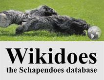 Wikidoes, Schapendoes, Schapendoesdatenbank