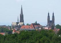 Der aktuelle Pegelstand in Speyer