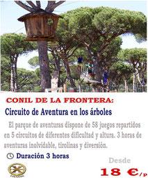 actividades en los árboles en Conil
