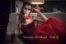 Sensory Overload - Part II