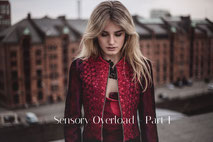 Sensory Overload - Part I