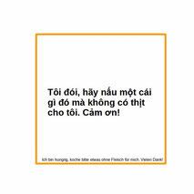 Übersetzung deutsch vietnamesisch Ich bin hungrig, koche bitte etwas ohne Fleisch für mich. Vielen Dank