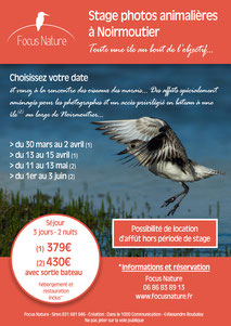 Dans le 1000 Communication - Agence graphique en Loir-et-Cher - Création de flyers, plaquettes, affiches, cartes de visite, banderoles - Stages photos de Focus Nature