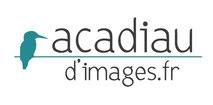 Dans le 1000 Communication - Agence graphique en Loir-et-Cher - Création de logos et de chartes graphiques - Logo d'Acadiau d'Images, site du photographe nature en Sologne et en France Alexandre Roubalay